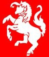 Vlag Twente 30x45cm