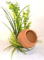 Sydeco jar plant 35CM