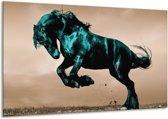 Glasschilderij Paard   Bruin, Blauw, Zwart   120x70cm 1Luik   Foto print op Glas    F002670