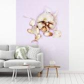 Fotobehang vinyl - Knoflook of Allium sativum tegen een lichte achtergrond breedte 375 cm x hoogte 500 cm - Foto print op behang (in 7 formaten beschikbaar)