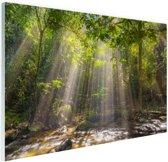 Zonnestralen door bladerdek Glas 180x120 cm - Foto print op Glas (Plexiglas wanddecoratie) XXL / Groot formaat!