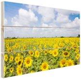 Zonnebloemen veld  Hout 60x40 cm - Foto print op Hout (Wanddecoratie)