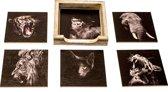 Originele Onderzetters Wilde dieren Set 1, 6 stuks met een houder van FSC-gecertificeerd hout