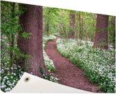 Pad in een bos met wilde knoflook Tuinposter 200x100 cm - Tuindoek / Buitencanvas / Schilderijen voor buiten (tuin decoratie) XXL / Groot formaat!