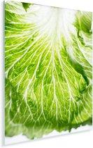 Een belicht detail van bindsla Plexiglas 60x90 cm - Foto print op Glas (Plexiglas wanddecoratie)