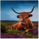 Schotse Hooglander op de Veluwe - Outdoor Schilderij op Canvas