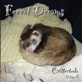 Ferret Dreams