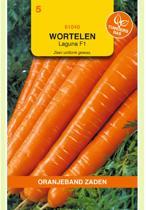 Oranjeband - Wortel Laguna F1 (zomerwortel)