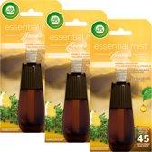 Air Wick Essential Mist Aroma Rozemarijn & Tijm Navulling 3 x 20 ml - Voordeelverpakking