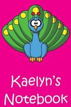Kaelyn's Notebook
