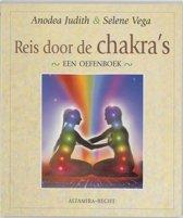 Reis door de chakra's