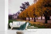 Fotobehang vinyl - Gele bladeren in de herfst bij het Kasteel van Chenonceau breedte 420 cm x hoogte 280 cm - Foto print op behang (in 7 formaten beschikbaar)