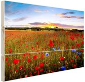 Tuin van Eden Hout 60x40 cm - Foto print op Hout (Wanddecoratie)