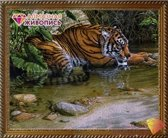 Diamond painting pakket Tijger in de Jungle AZ-1412 artibalta 50 x 40 cm