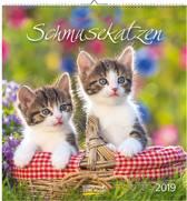 Kalender Katten briefkaart (16 x 17)