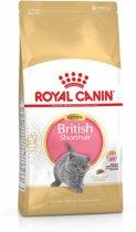Royal Canin British Shorthair Kitten - Kattenvoer - 10 kg