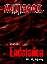 MINIBOOK 009: Endstation