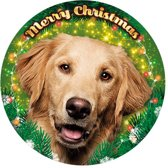 Xmas LED light Golden Retriever