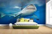 Grote witte haai Fotobehang 380x265