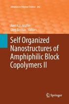 Self Organized Nanostructures of Amphiphilic Block Copolymers II