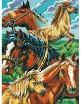 Schilderen op nummer - horse montage