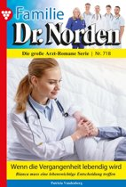 Familie Dr. Norden 718 – Arztroman