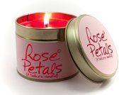 Lily Flame | Rose Petals