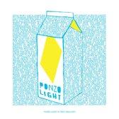 "Ponzo Light -10""-"