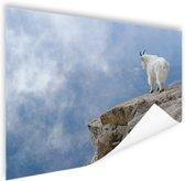 Berggeit bij een klif  Poster 150x75 cm - Foto print op Poster (wanddecoratie woonkamer / slaapkamer) / Dieren Poster