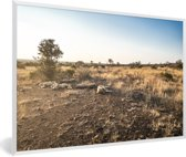 Foto in lijst - Dorre heidelandschap in het Nationaal park New Forest in Engeland fotolijst wit 60x40 cm - Poster in lijst (Wanddecoratie woonkamer / slaapkamer)