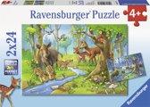 Ravensburger Dieren uit het bos Twee puzzels van 24 stukjes