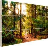 Een Amerikaans bospad Hout 160x120 cm - Foto print op Hout (Wanddecoratie) XXL / Groot formaat!