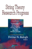 String Theory Research Progress