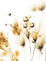 Fotobehang Golden Dandelion | XXL - 206cm x 275cm | 130g/m2 Vlies