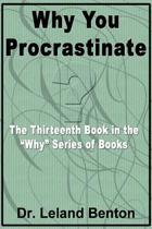 Why You Procrastinate