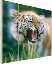 Woeste tijger Hout 60x80 cm - Foto print op Hout (Wanddecoratie)