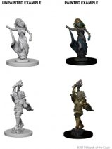 Dungeons and Dragons Nolzur's Marvelous Miniatures - Medusas
