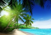 Fotobehang View Paradise Beach Palms Tropical | XXXL - 416cm x 254cm | 130g/m2 Vlies