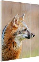 Grijze vos portret Hout 40x60 cm - Foto print op Hout (Wanddecoratie)