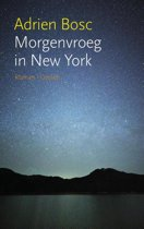 Morgenvroeg in New York