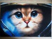 Deurmat 40x60  Kat Astronaut