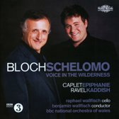 Schelomo And Voice In The Wildern