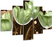 Glasschilderij Tulp | Groen, Bruin | 100x70cm 5Luik | Foto print op Glas |  F005068