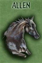 Watercolor Mustang Allen