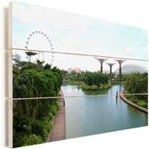 Overzicht van Gardens by the Bay in Singapore Vurenhout met planken 60x40 cm - Foto print op Hout (Wanddecoratie)