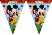 Mickey Mouse vlaggenlijn 2,3 meter
