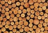 Fotobehang Wood Texture Logs Nature   XXL - 206cm x 275cm   130g/m2 Vlies