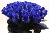 Boeket 25 blauwe rozen