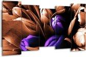 Canvas schilderij Tulp | Paars, Bruin, Wit | 150x80cm 5Luik
