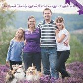 Shetland Sheepdogs of the Wonnegau Highlands